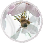 Cherry Blossom With Bee Round Beach Towel