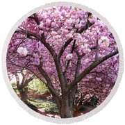 Cherry Blossom Wonder Round Beach Towel
