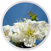 Cherry Blossoms Art White Spring Tree Blossom Baslee Troutman Round Beach Towel