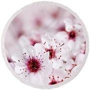 Cherry Blossoms Round Beach Towel by Elena Elisseeva