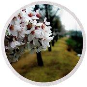 Cherry Blossoms Trail Round Beach Towel