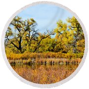 Cherry Creek Pond In Autumn Round Beach Towel