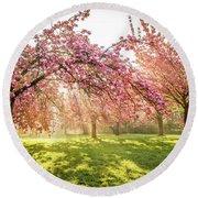 Cherry Flowers Garden Illuminated With Sunrise Beams Round Beach Towel