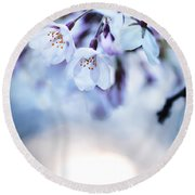 Cherry Tree Blossoms In Morning Sunlight Round Beach Towel