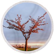 Cherry Tree Standing Alone In A Park, Lit By The Light  Round Beach Towel