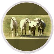 Cheviot Sheep Round Beach Towel