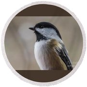 Chickadee Close Up Round Beach Towel