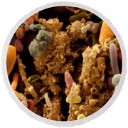 Chicken Droppings Round Beach Towel