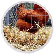 Chicken In The Straw Round Beach Towel