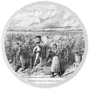 Chile: Wine Harvest, 1889 Round Beach Towel