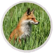 Chillin Vixen  Round Beach Towel