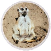 Chilling Meerkat Round Beach Towel