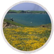 Chimney Rock Trail And Drakes Bay Round Beach Towel