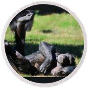 Chimp Sunbathing Round Beach Towel