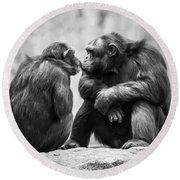 Chimpanzee Pair Round Beach Towel