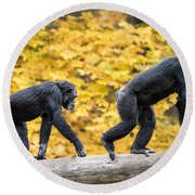 Chimpanzee Pair IIi Round Beach Towel