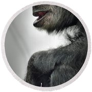 Chimpanzee Profile Vignetee Effect Round Beach Towel