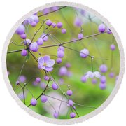 Chinese Meadow Rue Flowers Opening Round Beach Towel