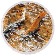Chinook In Cottage Lake Creek Round Beach Towel