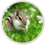 Chipmunk Saving Seeds Round Beach Towel