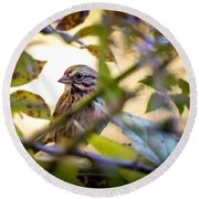 Chipping Sparrow In The Brush Round Beach Towel