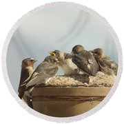 Chirping Swallows Round Beach Towel