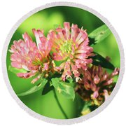 Chives Round Beach Towel