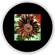 Chocolate Sunflower Round Beach Towel