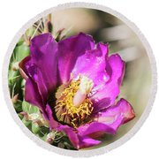 Cholla Flower Round Beach Towel