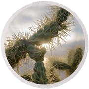Cholla, Organ Pipe National Monument, Az  January 2015 Round Beach Towel