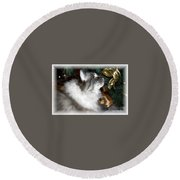 Christmas Kitty Round Beach Towel