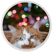Christmas Kitty In A Basket Round Beach Towel
