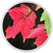 Christmas Leafs Round Beach Towel