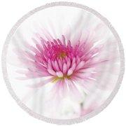 Chrysanthemum #003 Round Beach Towel