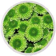 Chrysanthemum Green Button Pompon Kermit Round Beach Towel