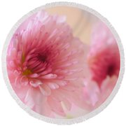 Chrysanthemums #011 Round Beach Towel