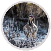 Chukar Round Beach Towel