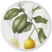 Citrus Bergamot Round Beach Towel by Margaret Ann Eden