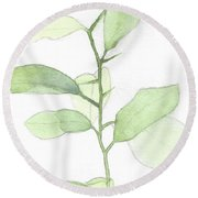 Citrus Sapling Round Beach Towel