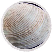 Clam Shell Round Beach Towel