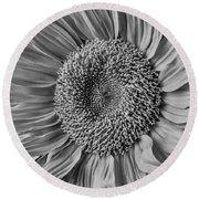 Classic Black And White Sunflower Round Beach Towel