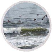 Classic Brown Pelicans Round Beach Towel