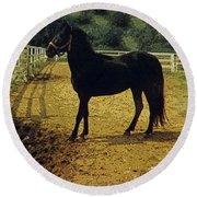 Classic Morgan Horses Round Beach Towel