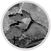 Clear Creek Greenway Two Round Beach Towel
