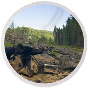 Clearcut Logging Site Round Beach Towel