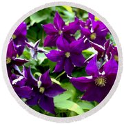 Clematis Flowers Round Beach Towel by Corey Ford