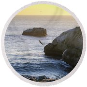 Cliff Jumping To Surf Round Beach Towel