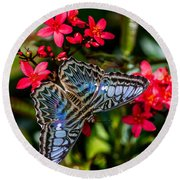 Clipper Butterfly 1 Round Beach Towel