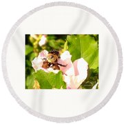 Close Up Bumble Bee Climbing Out Of Hibiscus Flower Round Beach Towel