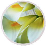 Close Up Calla Lilies Round Beach Towel